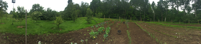 panoramic photo of my parents' garden in Vermont